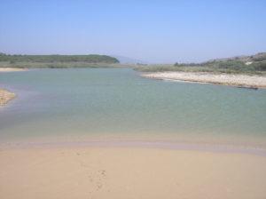 fiume-platani