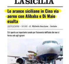 Arance siciliane in Cina per via Aerea. Cancelleri (M5S): Governo Conte al fianco del comparto agrumicolo
