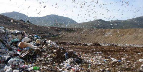 Emergenza rifiuti. M5S: Rimpallo di responsabilità vergognoso