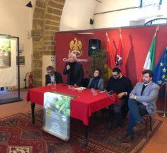 La canapa non va demonizzata: a Palermo proficuo confronto promosso dal M5S